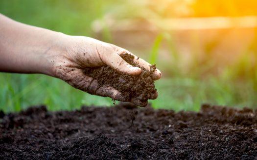 Amending Soils