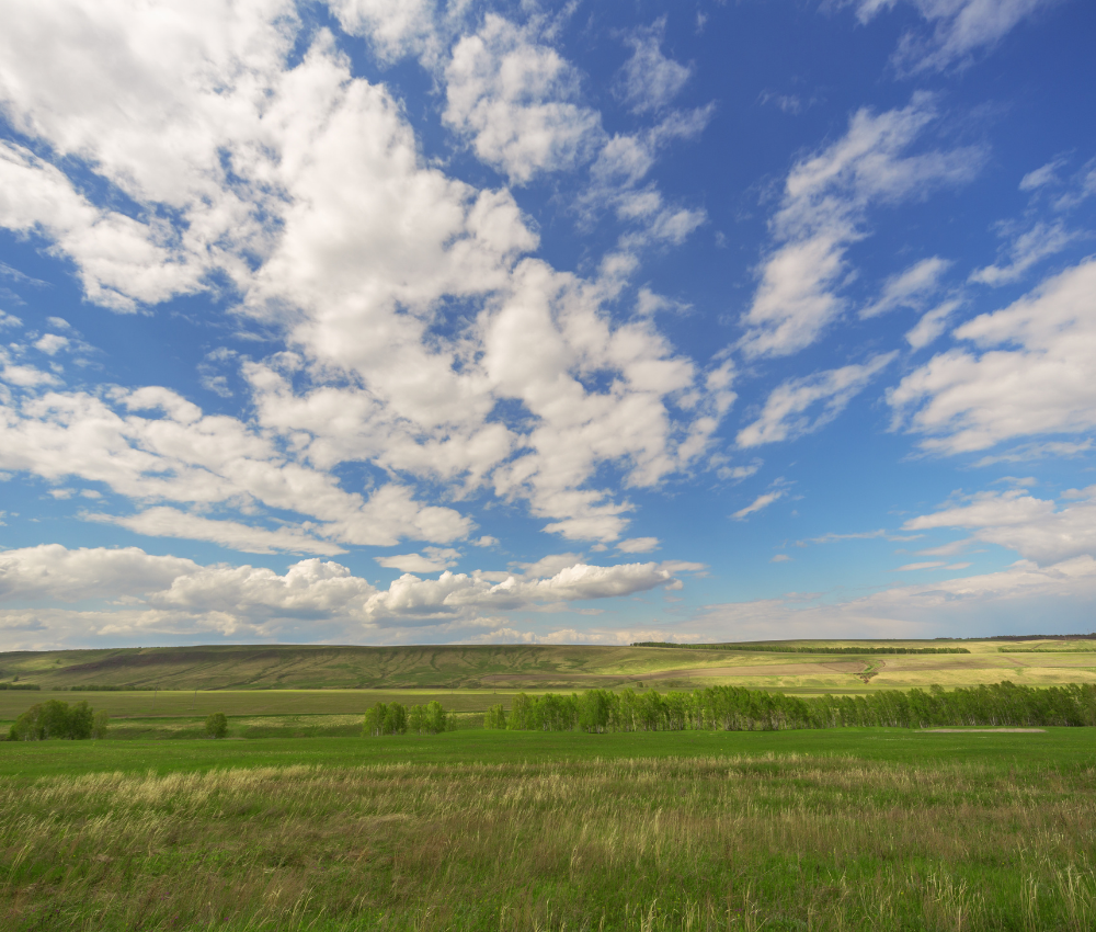 Buying Land - What You Need to Know