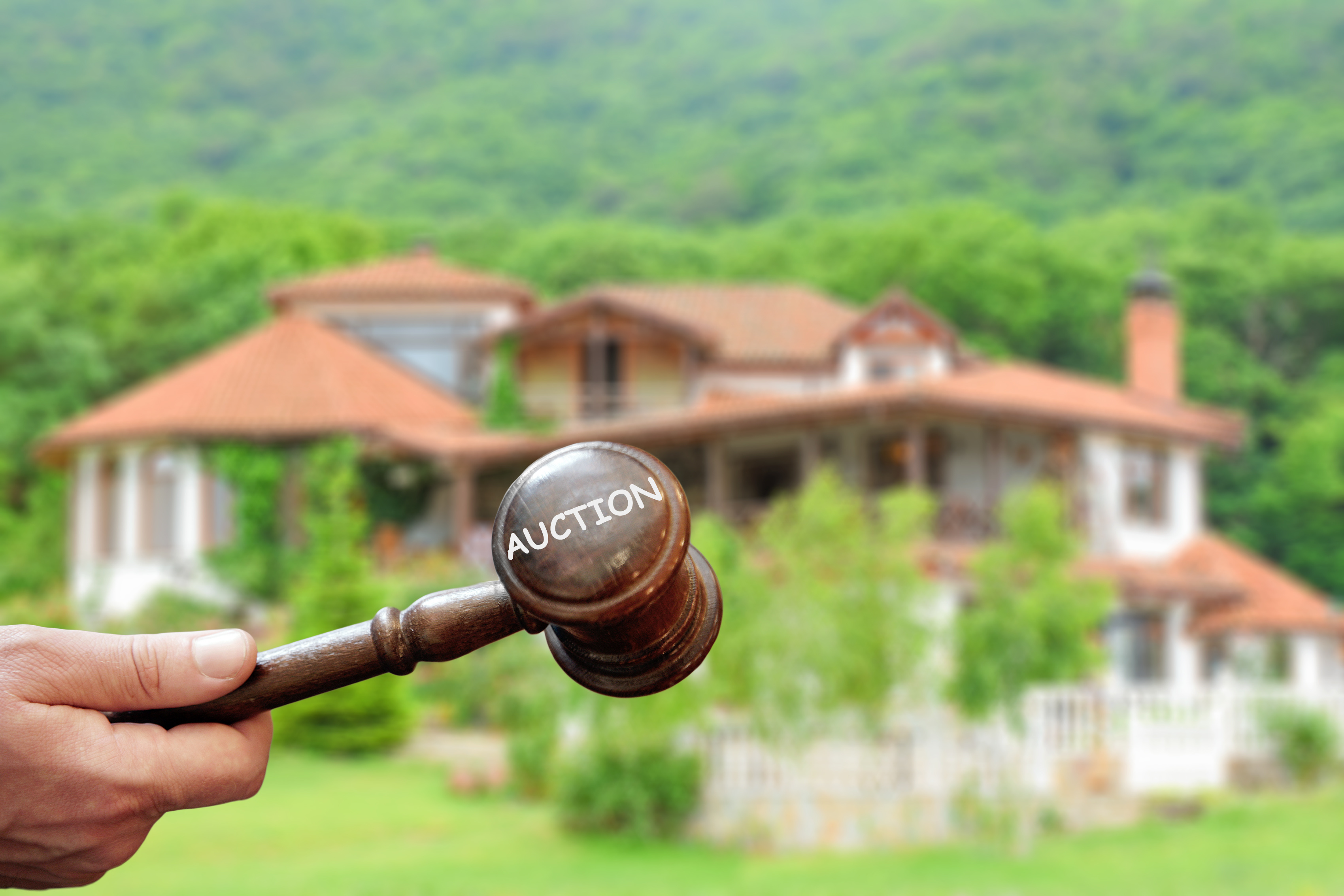 Hiring a Specialized Auctioneer: What Does it Mean?