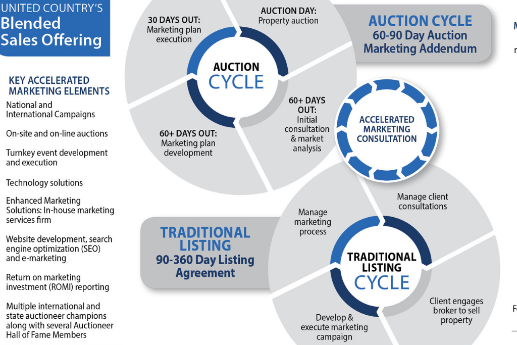 The Auction Process: From Start to Finish