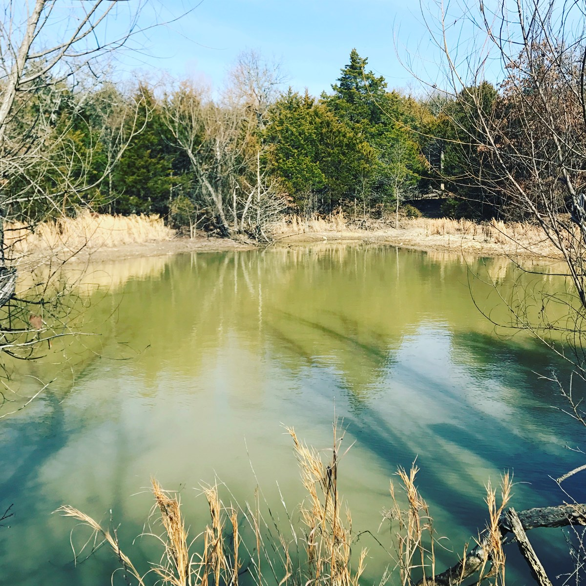40+/- Acre Hunting Property with Cabin - Hughes County, Oklahoma