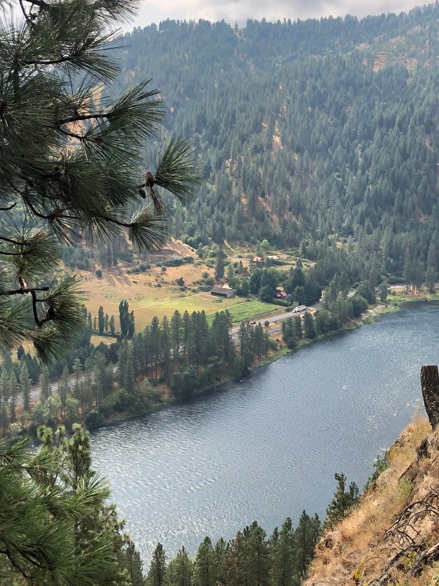 Wooded Seclusion Above the Clearwater River in North Idaho