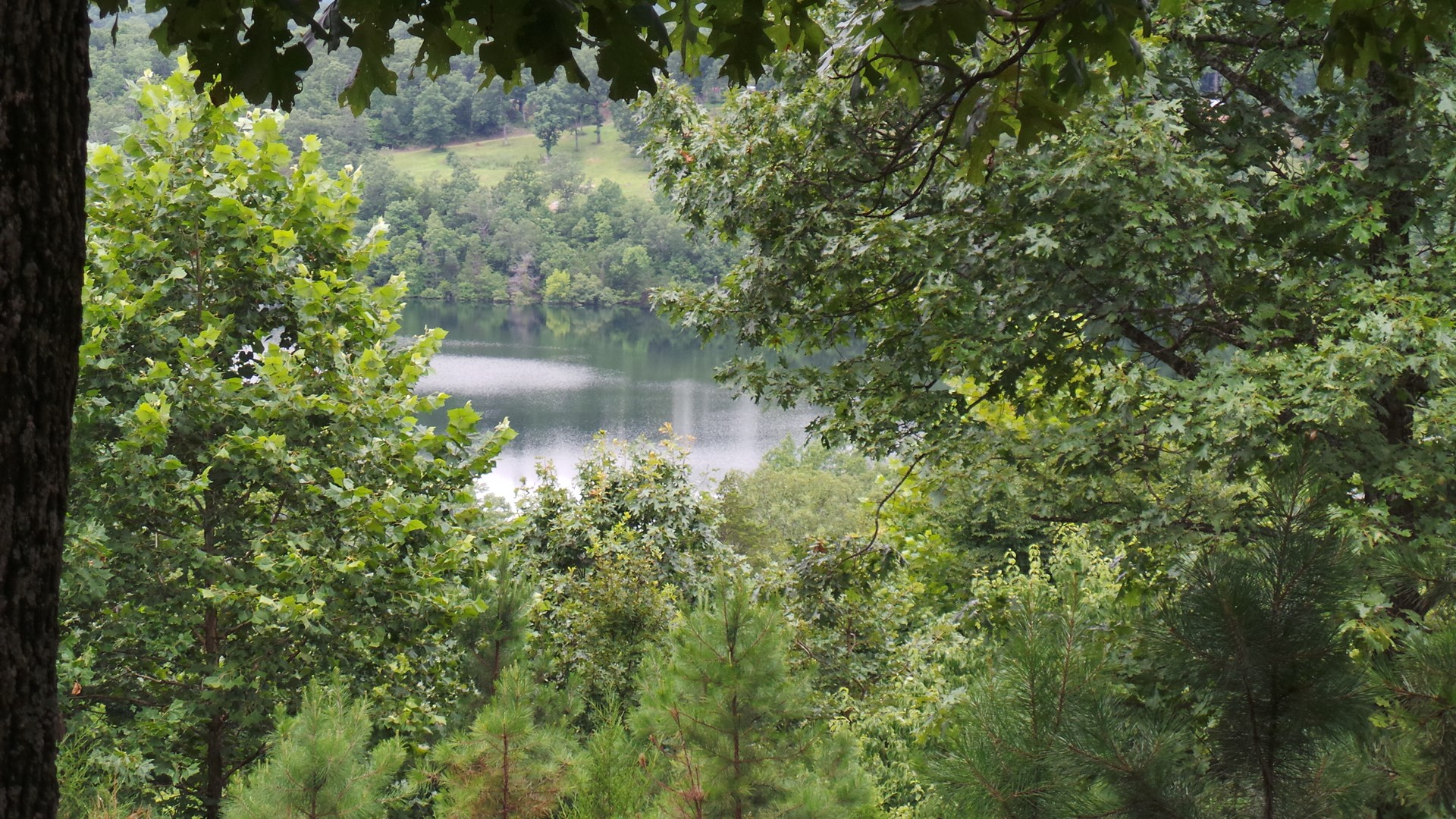 BEAUTIFUL TRACT OVERLOOKING BULL SHOALS LAKE