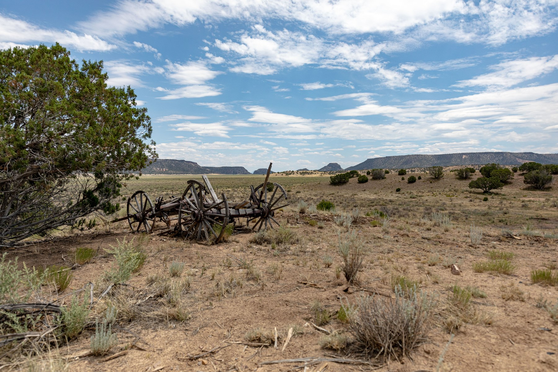Ranch For Sale 8 Miles North of Quemado NM Highway 601