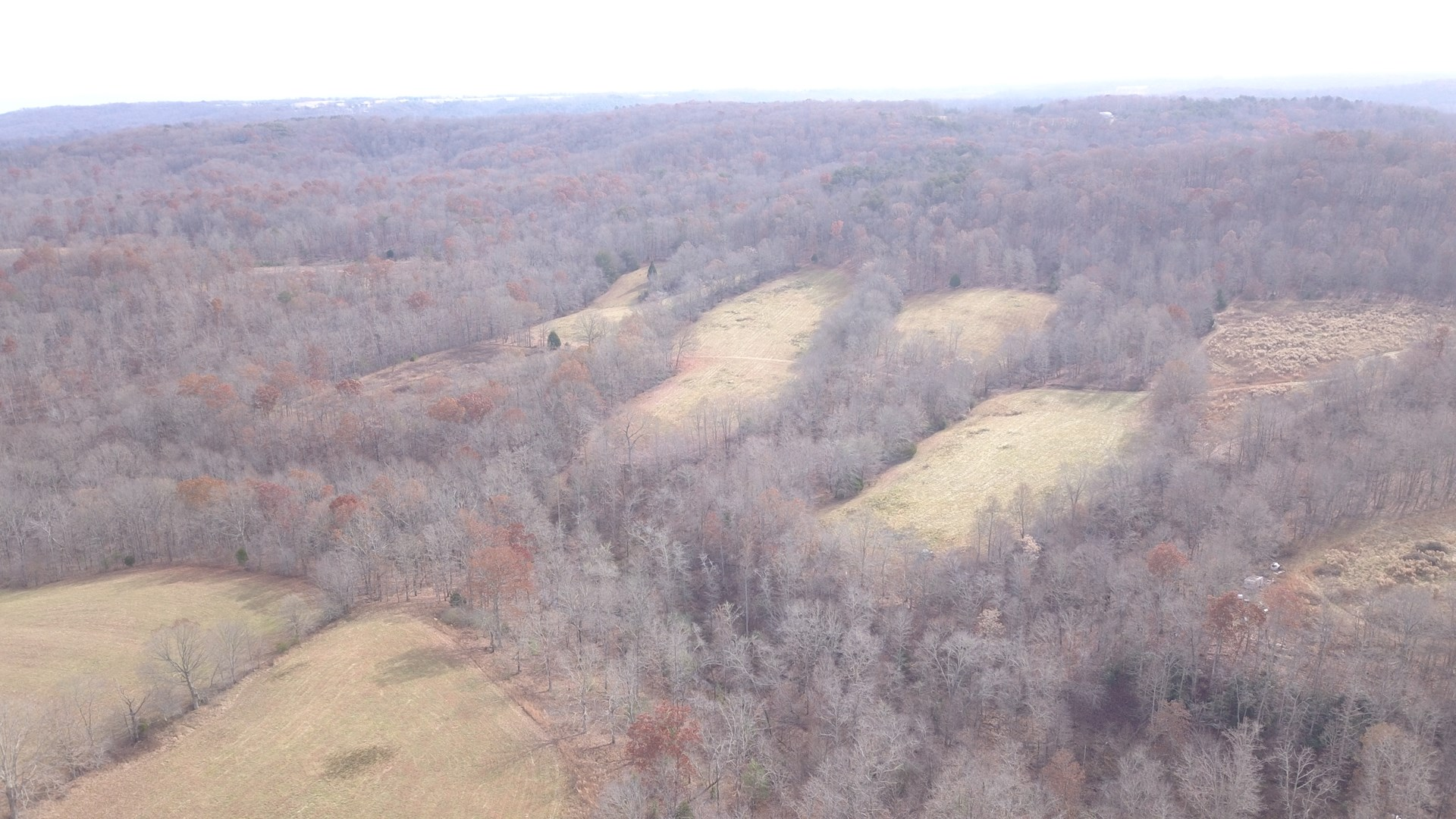 Hunting & Farming Land for Sale, in Pikeville Tennessee