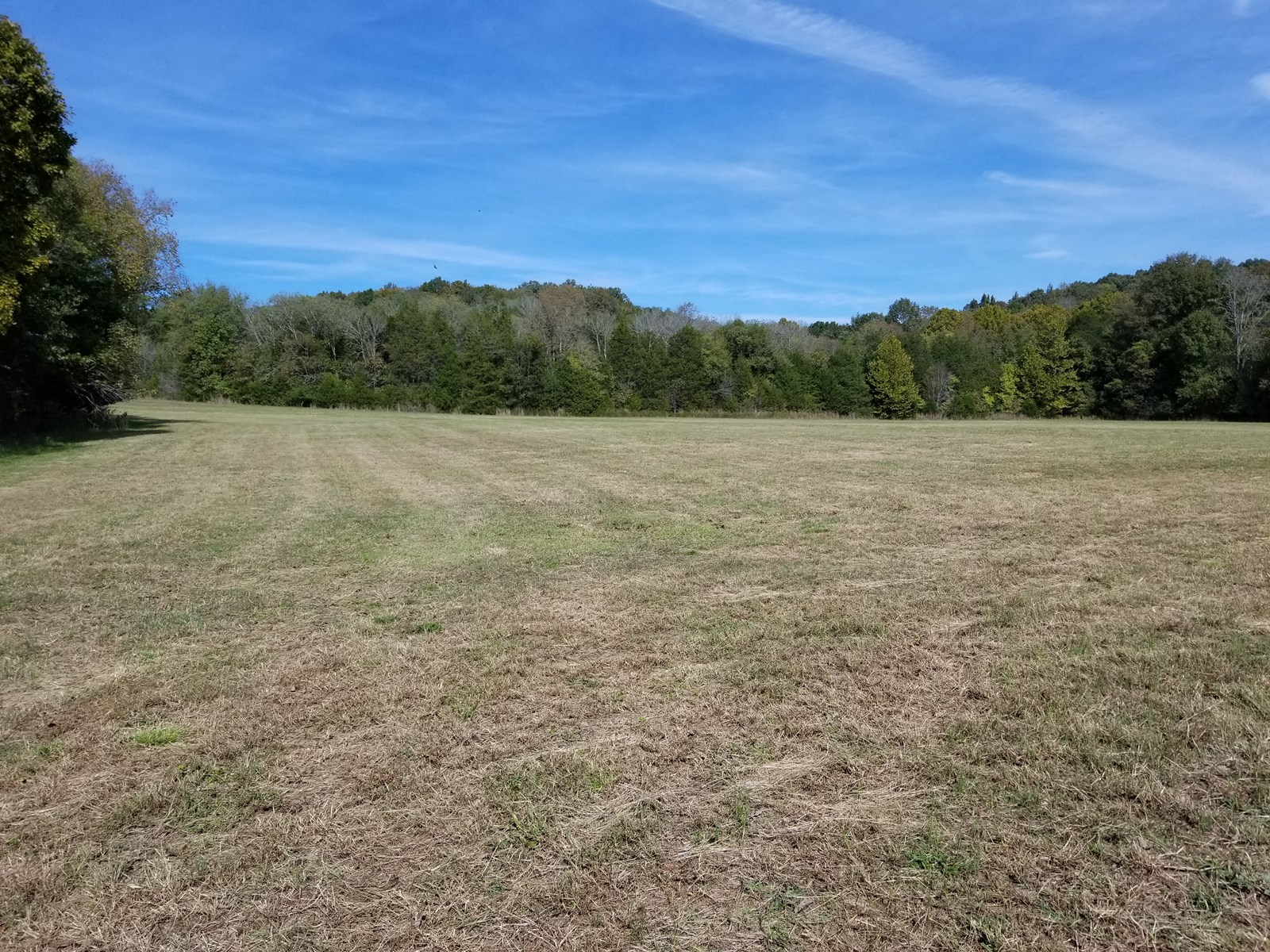 9.35 Ac Residential Land For Sale Linden TN