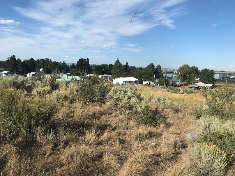 LOOKING FOR GREAT INVESTMENT? 5 ACRES ON EDGE OF HINES OR