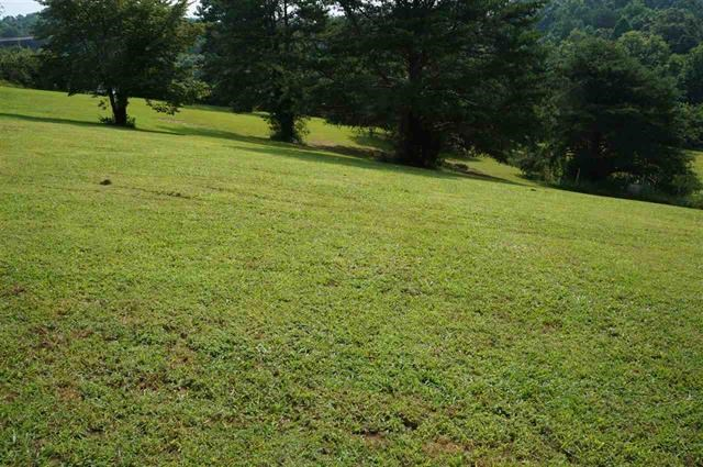 .79 Acre Vacant Lot For Sale in Bean Station, TN