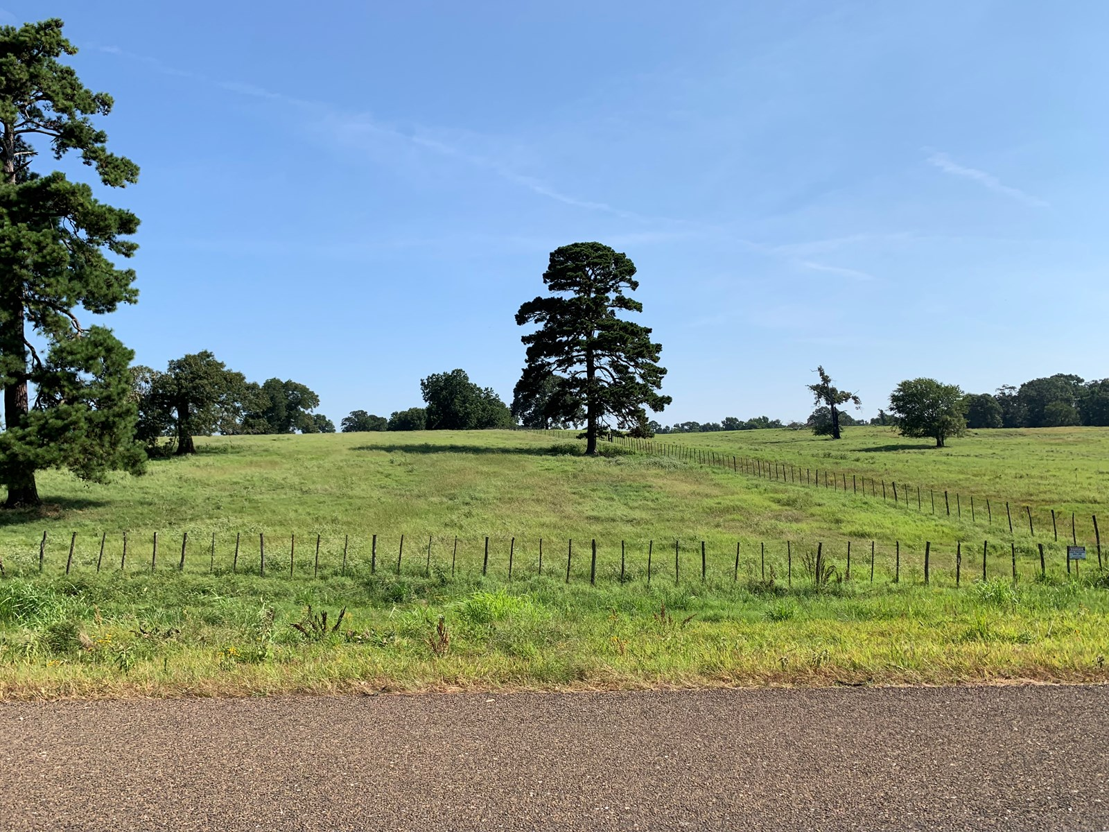 elevation on land for sale in tx  great homesite