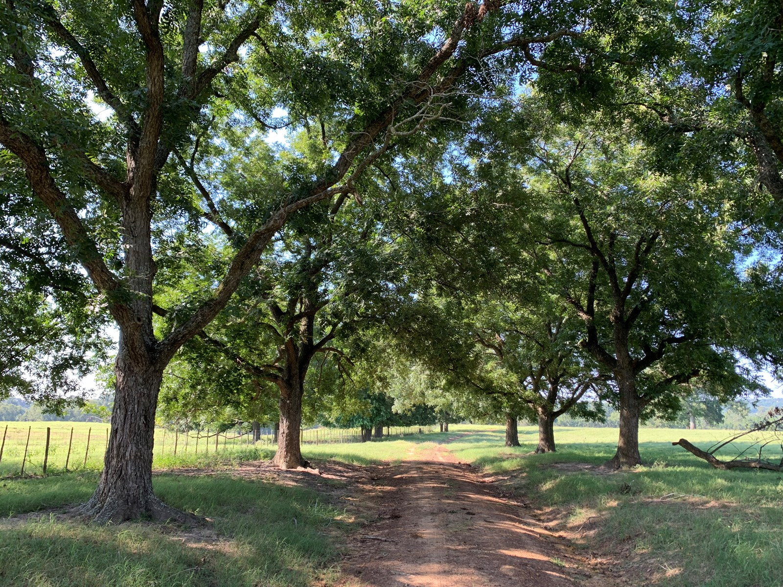 Ranch with hardwoods for sale near Frankston TX