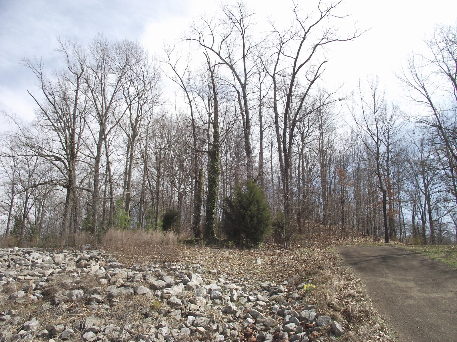 LAND FOR SALE IN TENNESSEE TO BUILD A HOME ON