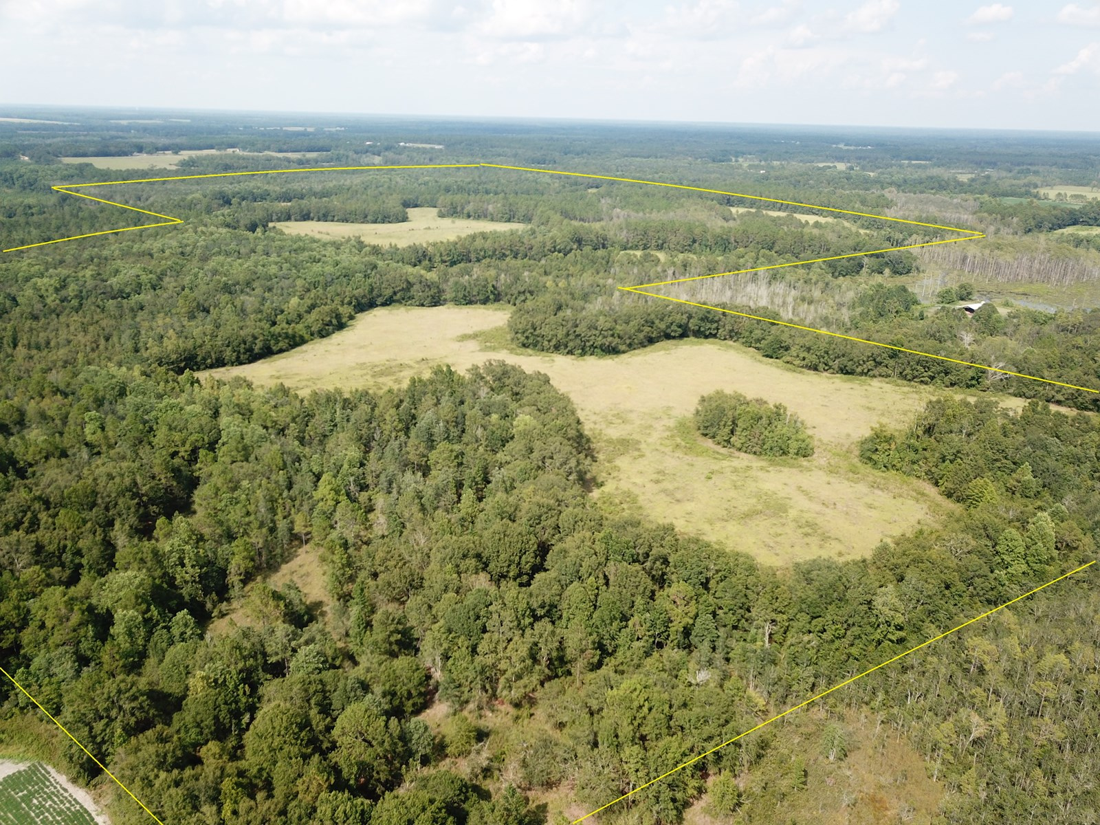 360 Acres Holmes County FL - Bethlehem - Pasture and Timber