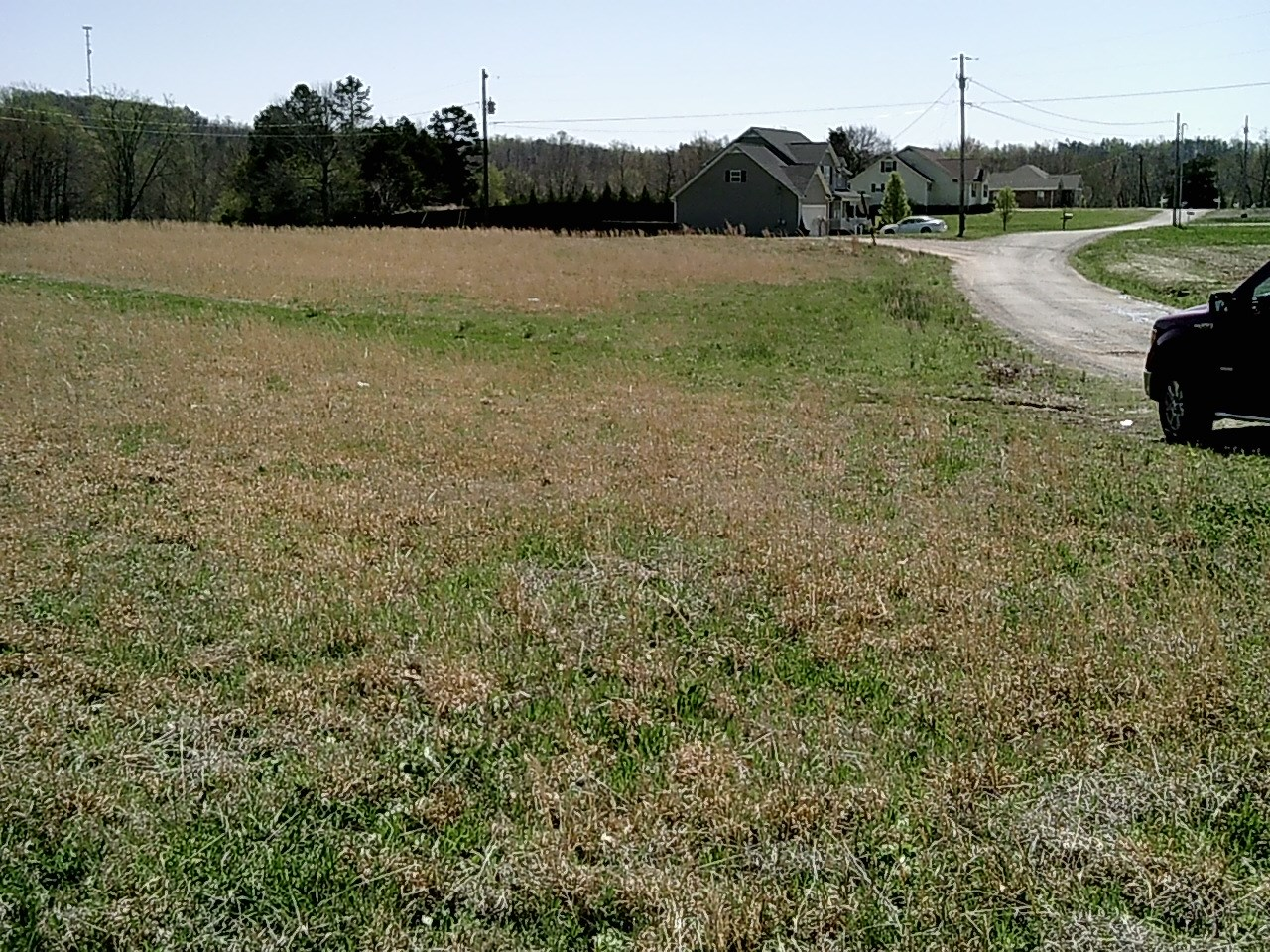 LAND TO BUILD ON IN SAVANNAH, TN - STEELE SIDE ACRES