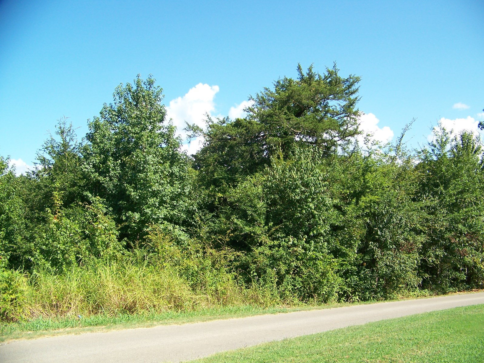 LAND TO BUILD ON FOR SALE -NICE SUBDIVISION - HARDIN COUNTY