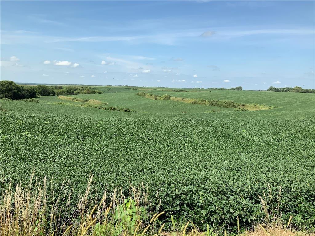 155 Acres M/L Prime Farm Ground For Sale