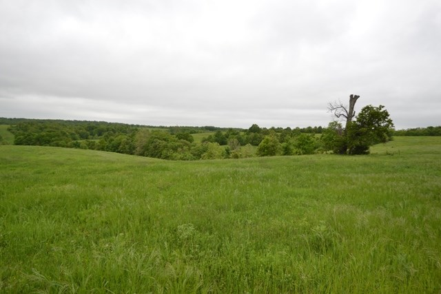 South Central Missouri Cattle Ranch for Sale