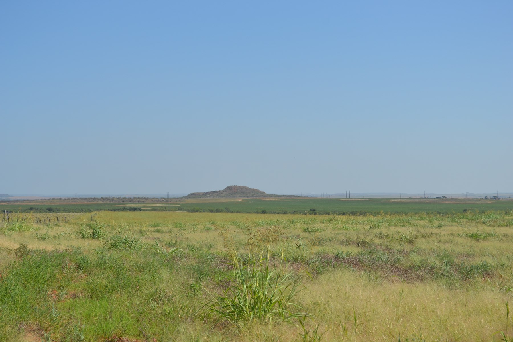 HUNTING PROPERTY LAND FOR SALE ESTELLINE TEXAS REALTREE