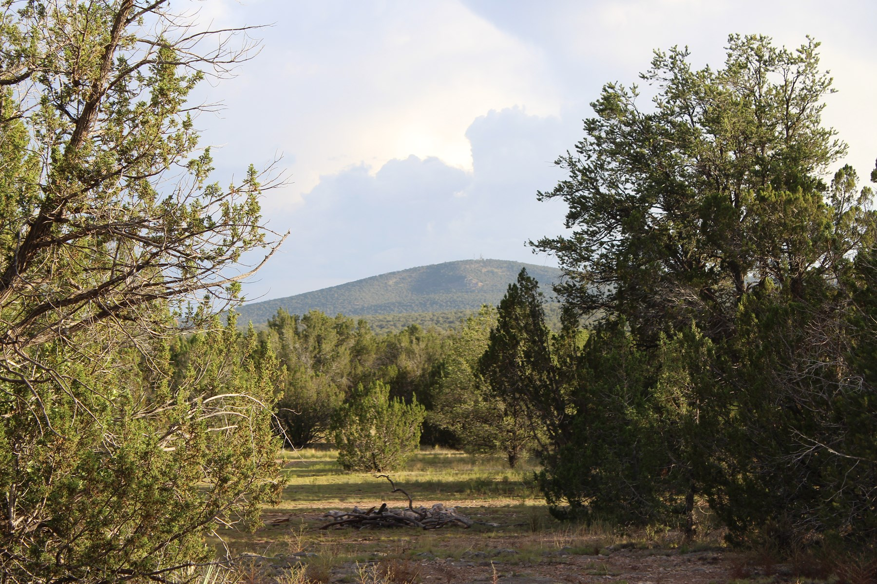 Mountain Property borders State Land 39 acres