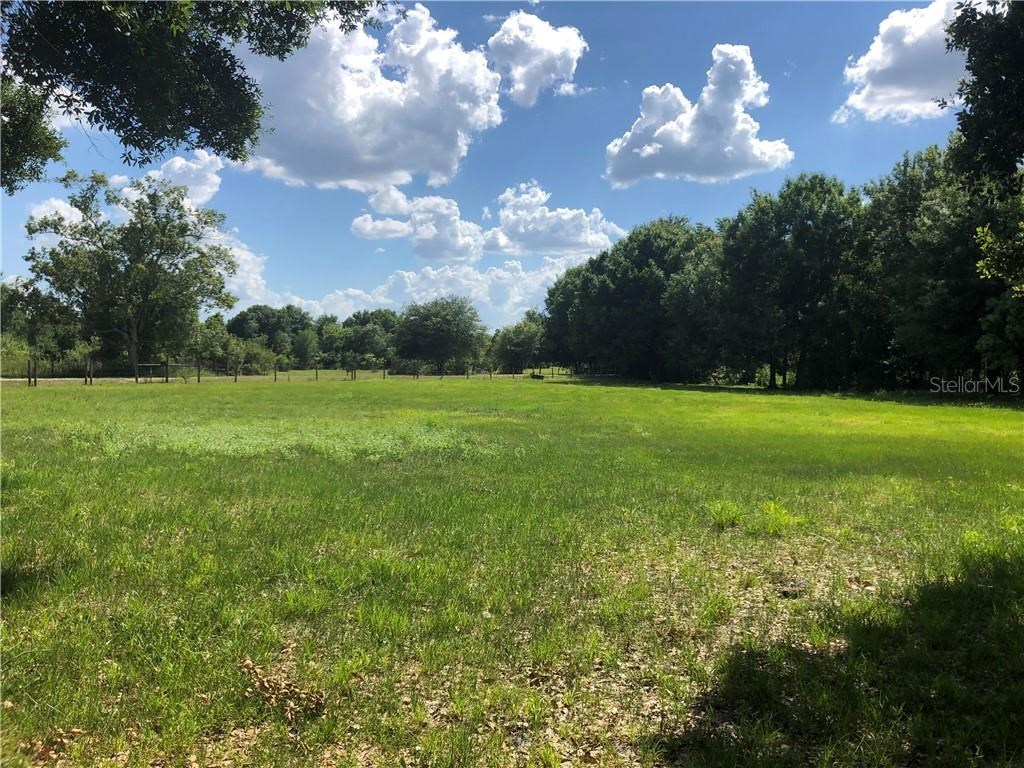 Five (5) acre homesite for sale in Arcadia, FL.