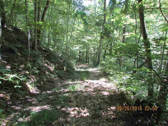 9.2 Acres Unrestricted Land For Sale in Greeneville, TN