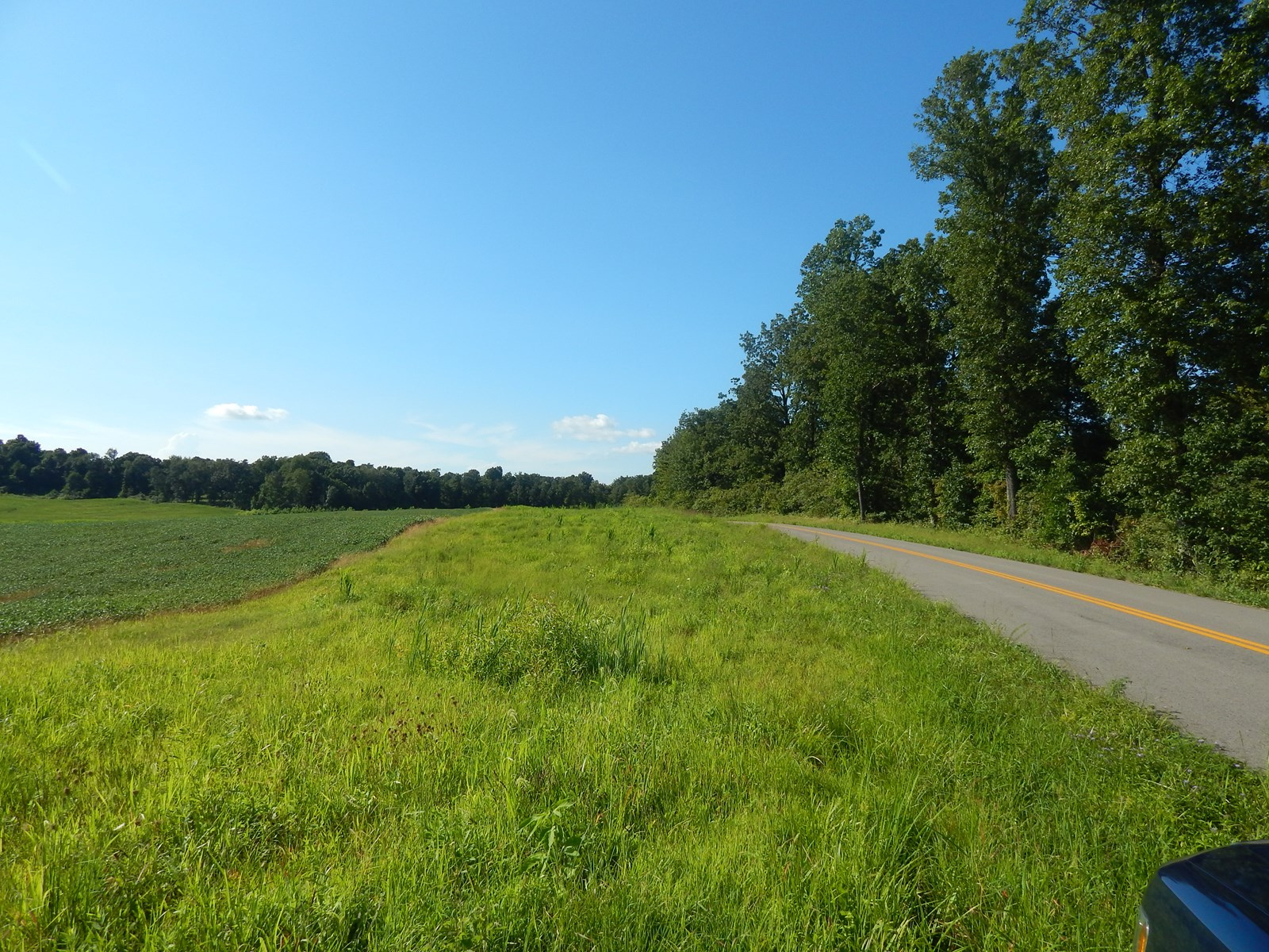130.26 acre farm for sale near Central City Ky.