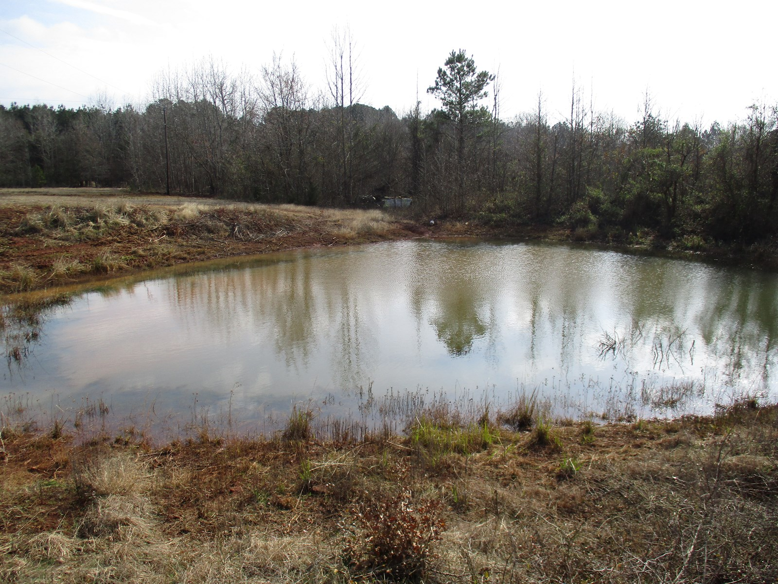 Farm/Ranch For Sale - East Texas Real Estate