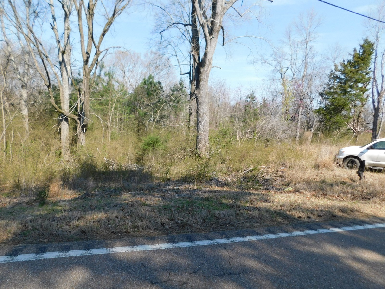 LAND FOR SALE IN TN WITH UTILITIES NO RESTRICTIONS