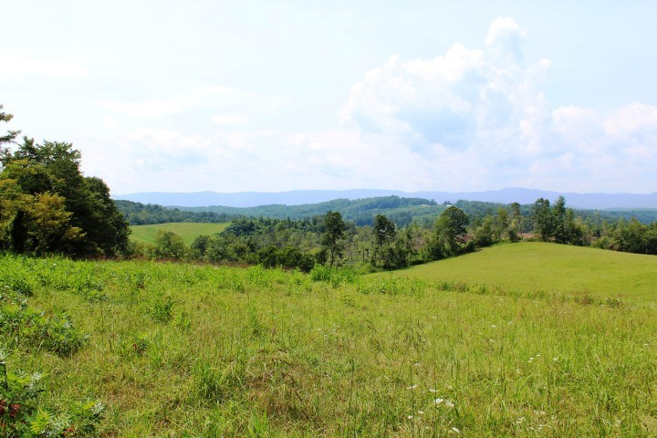 25.48 ACRES OF LAND FOR SALE IN PATRICK COUNTY,