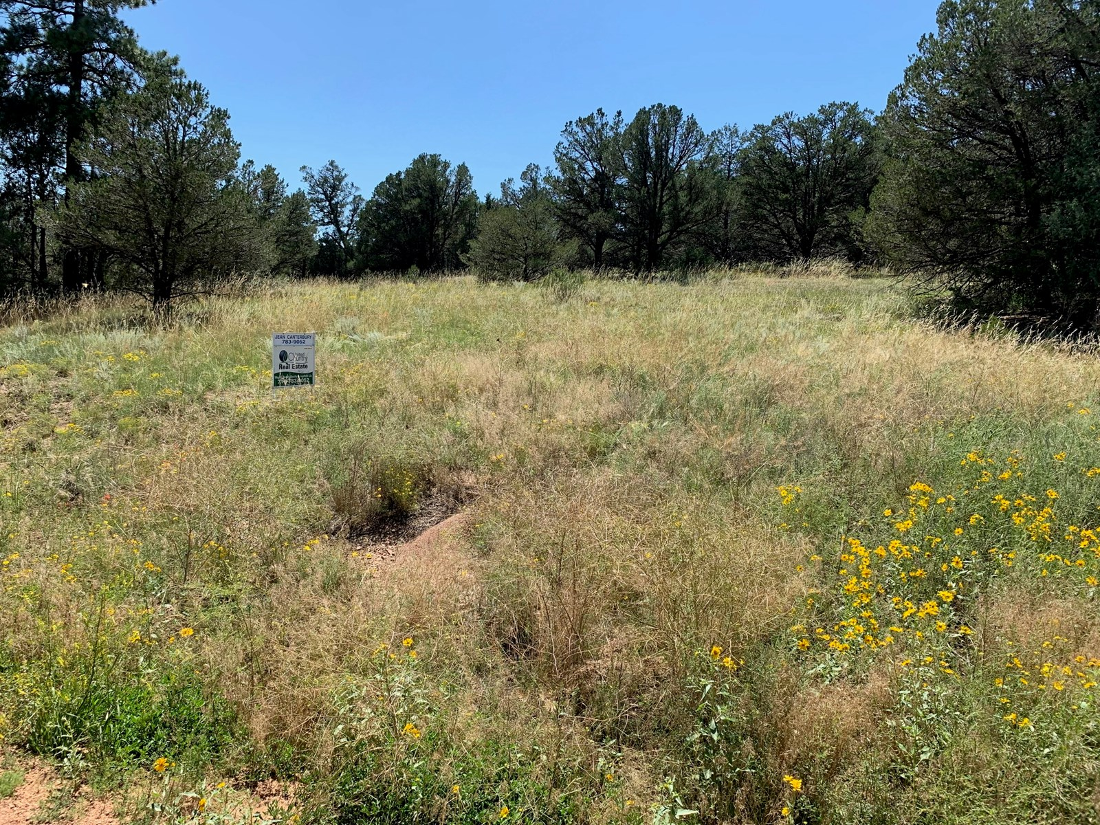 5+ Acres in Cotopaxi, Co Fremont County