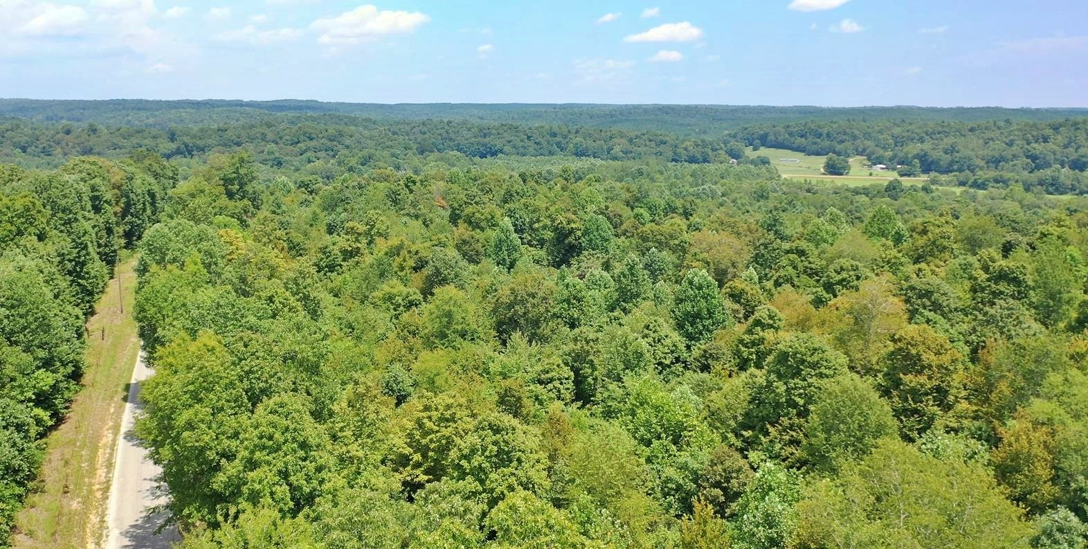 Hunting Property For Sale Parsons, TN 38363