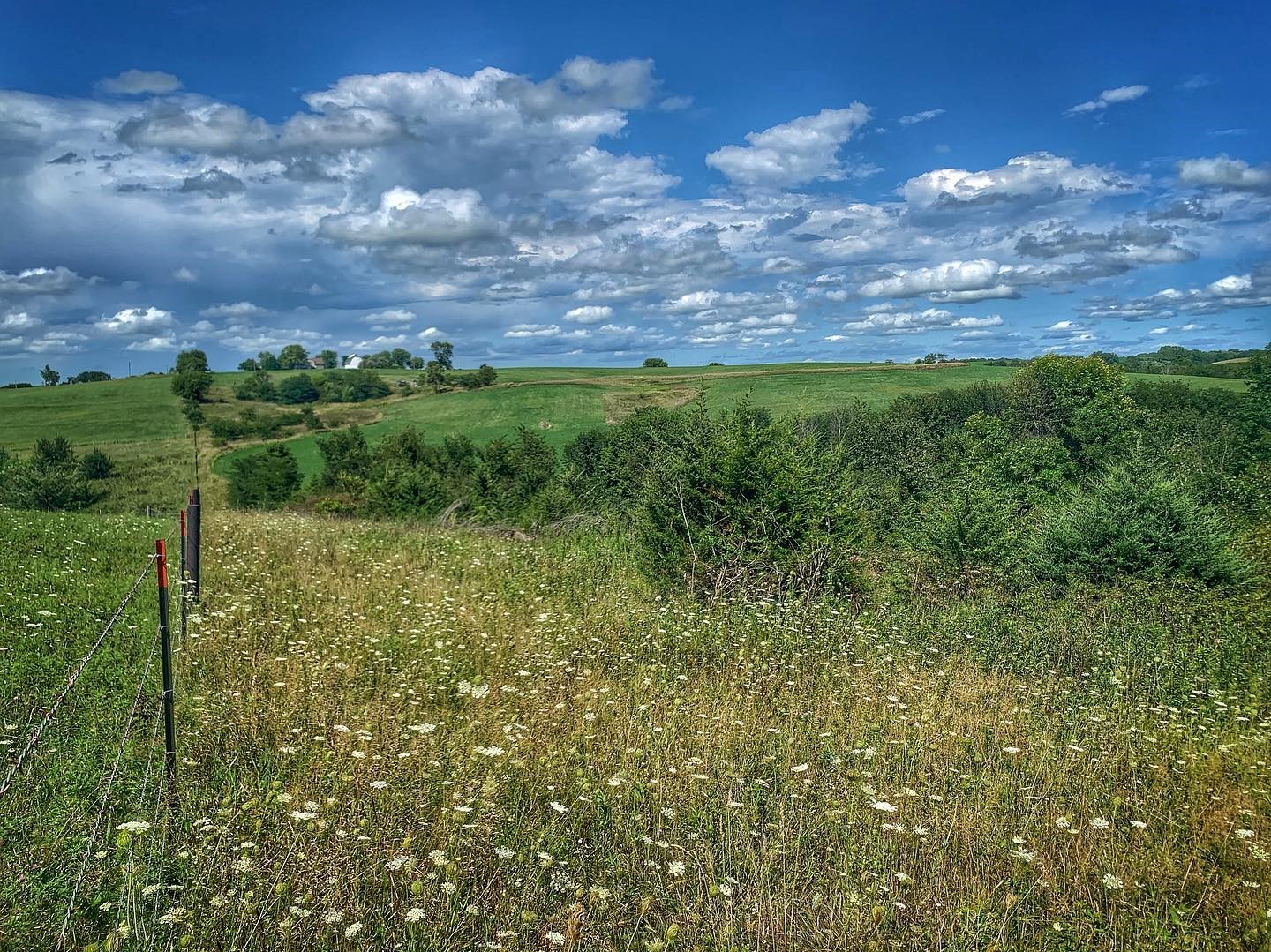 80 Acre Farm For Sale In Union County Iowa