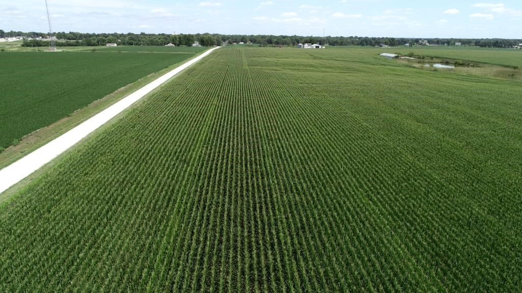 Online Only Tillable Row Crop Farm Land Auction Shelby Co MO