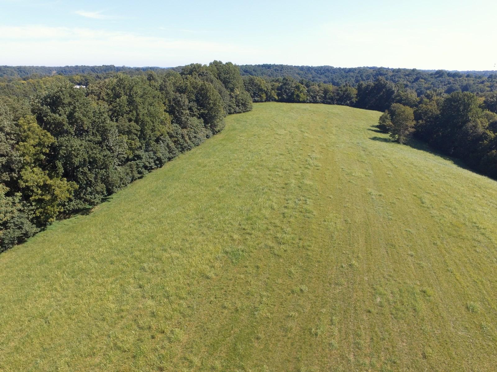 41 Acres of Pasture