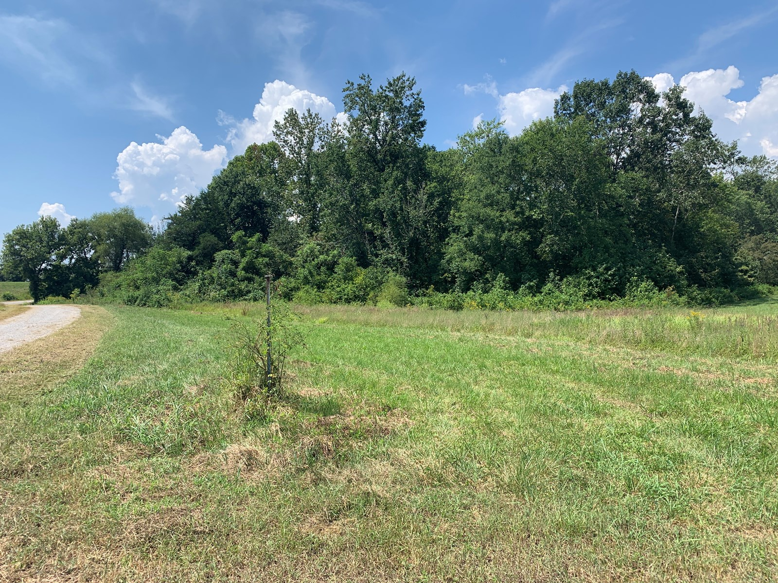 Land for sale in Burkesville, Kentucky