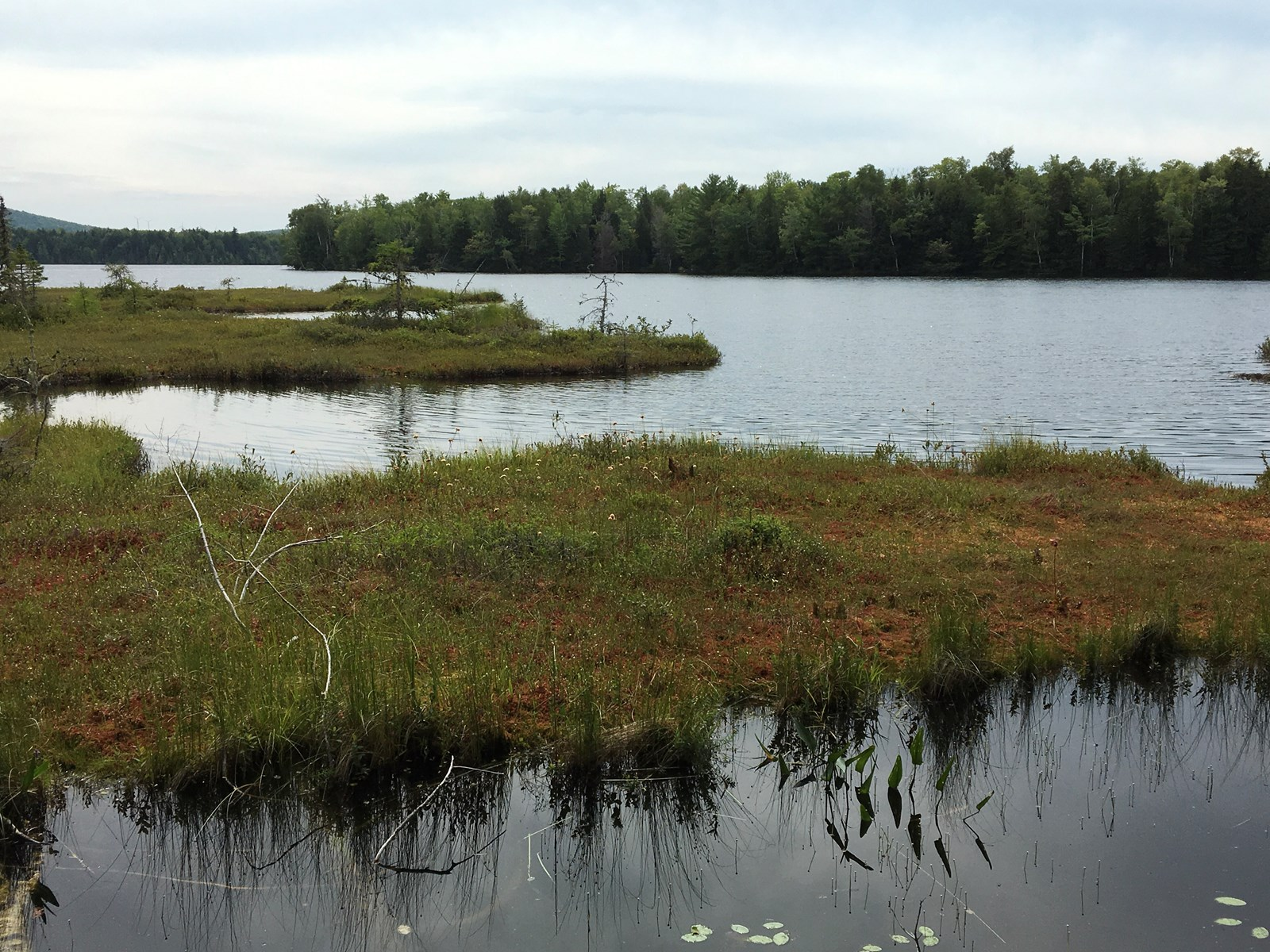 Lakefront Land for Sale in Lincoln, Maine