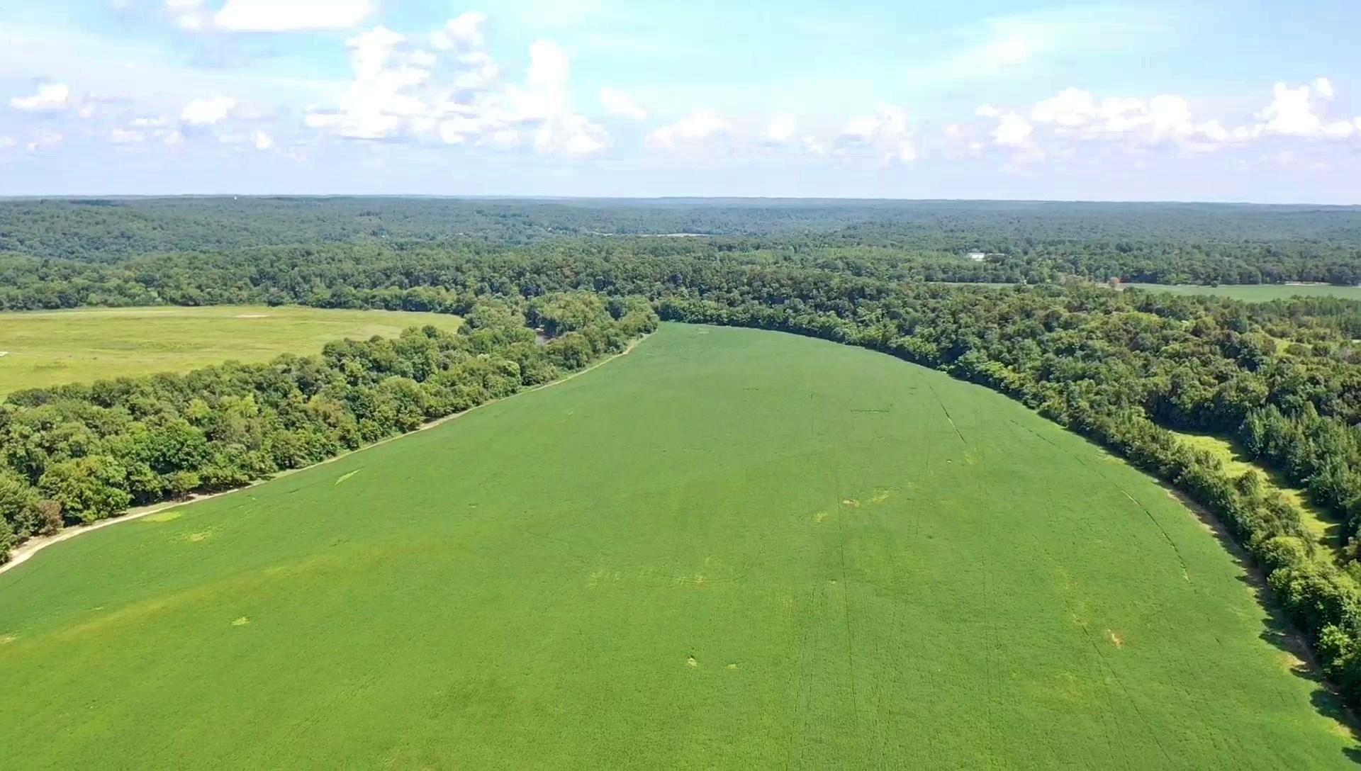 Buffalo River Farm For Sale Linden TN