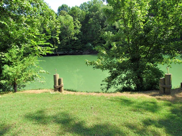 3 Buffalo Riverfront Lots Linden Tennessee $49,900