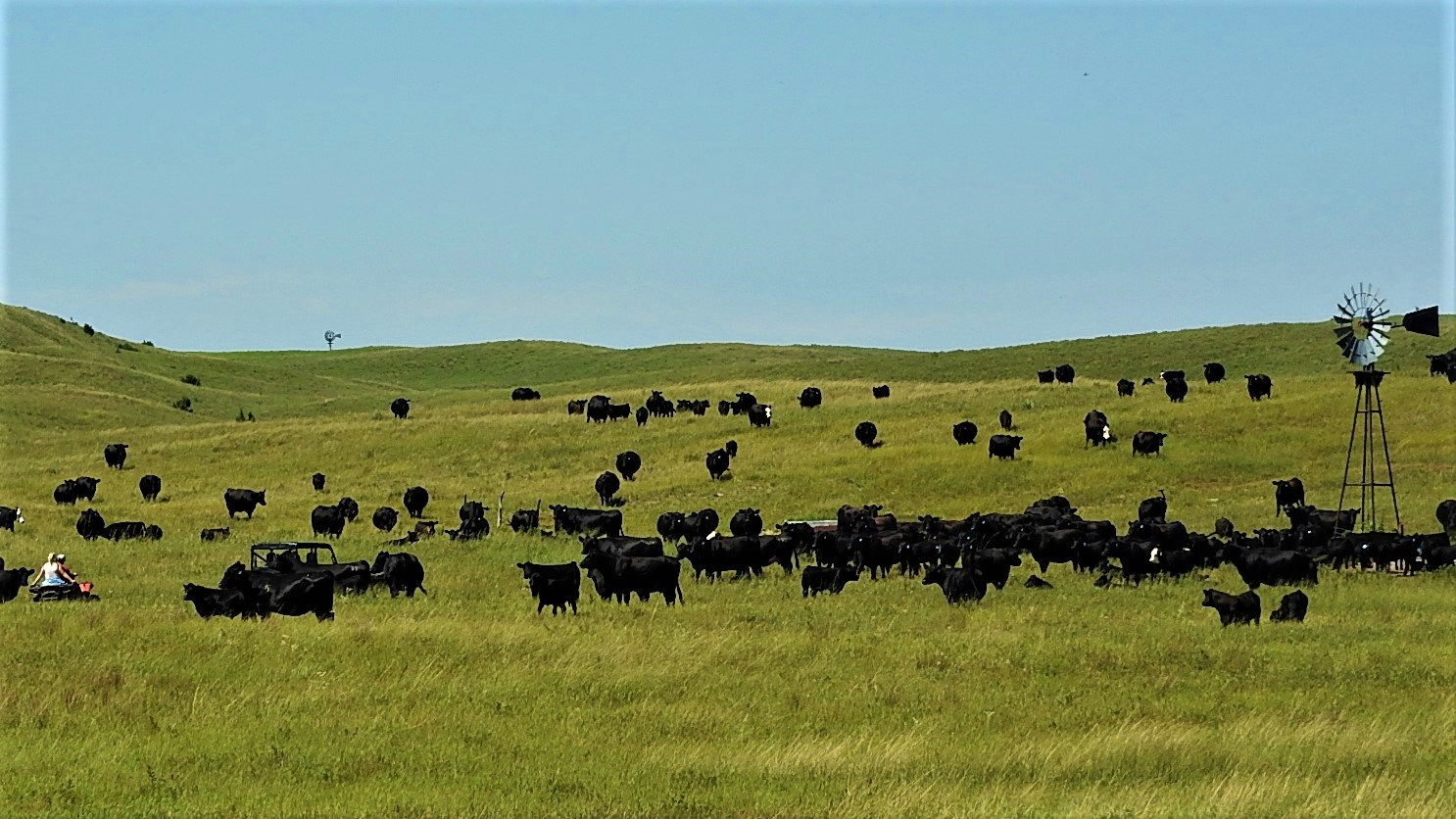 NEBRASKA SANDHILLS  RANCH FOR SALE