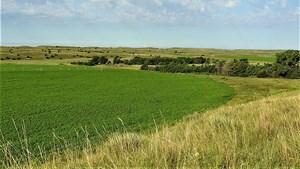 KNIEVEL NEBRASKA SANDHILLS  FARM & RANCH FOR SALE