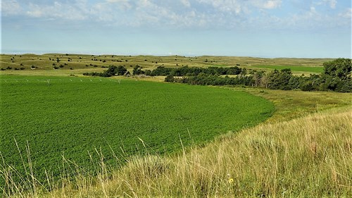 NEBRASKA SANDHILLS  FARM & RANCH FOR SALE