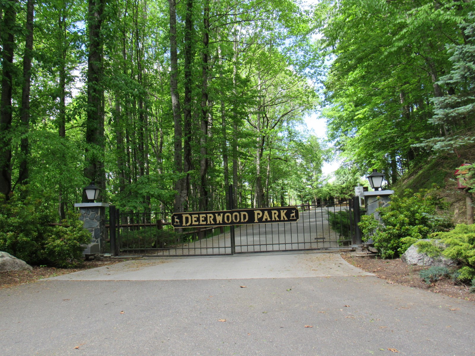 :Nice building lot with mountain views in Deerwood Park