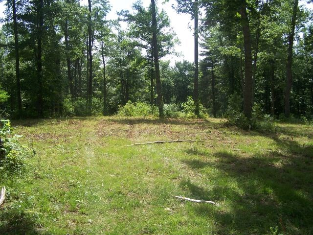 43.37 ACRES LOCATED IN PATRICK COUNTY, VIRGINIA
