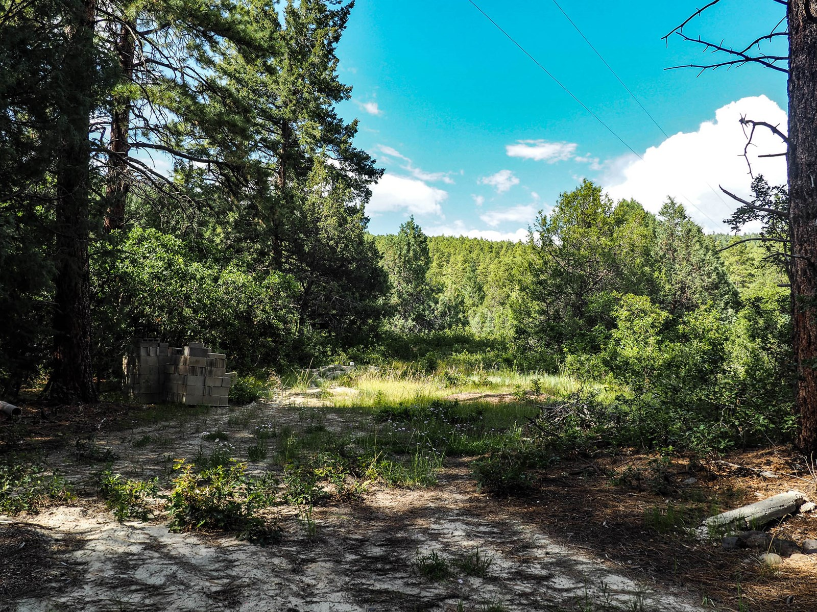 Secluded lot with well and Elec. for sale Brazos Cliffs