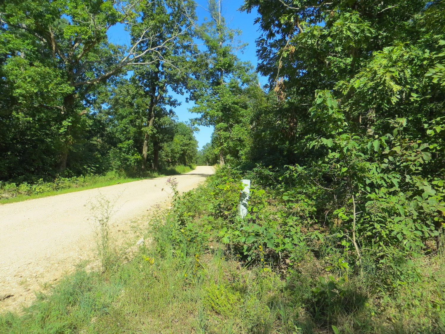 Acreage for Sale in Mammoth Spring, AR