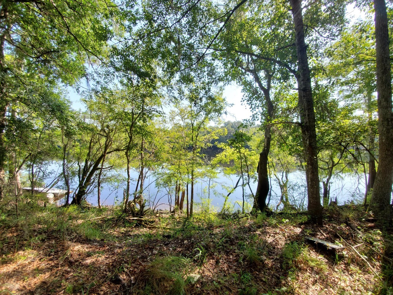 Suwannee River lot with Utilities Dixie County FL Buildable