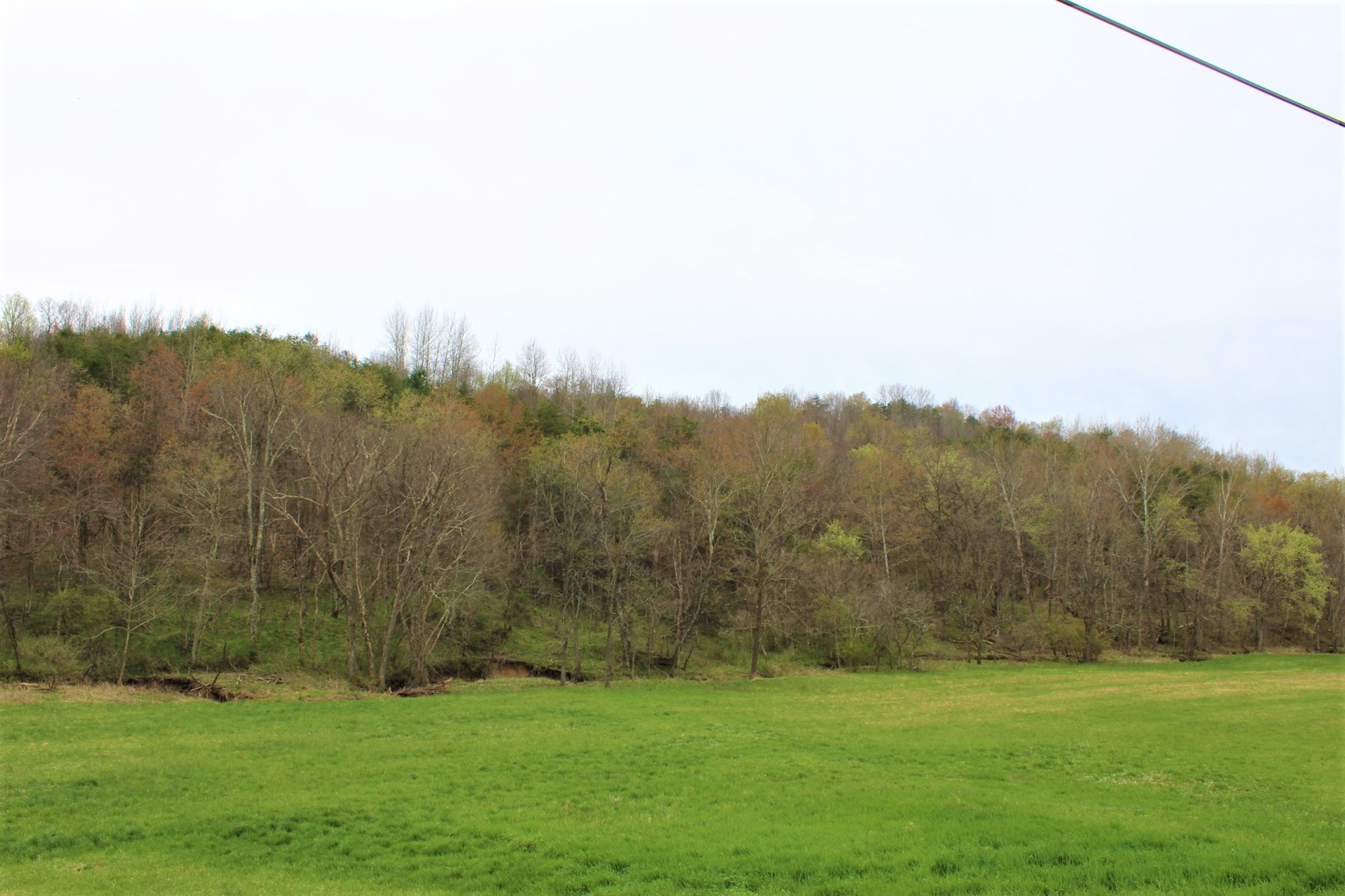 12.6 Acres of Ohio land for sale in the Hocking Hills.