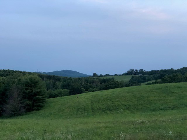 Beautiful Farm Land for Sale between Floyd & Hillsville VA