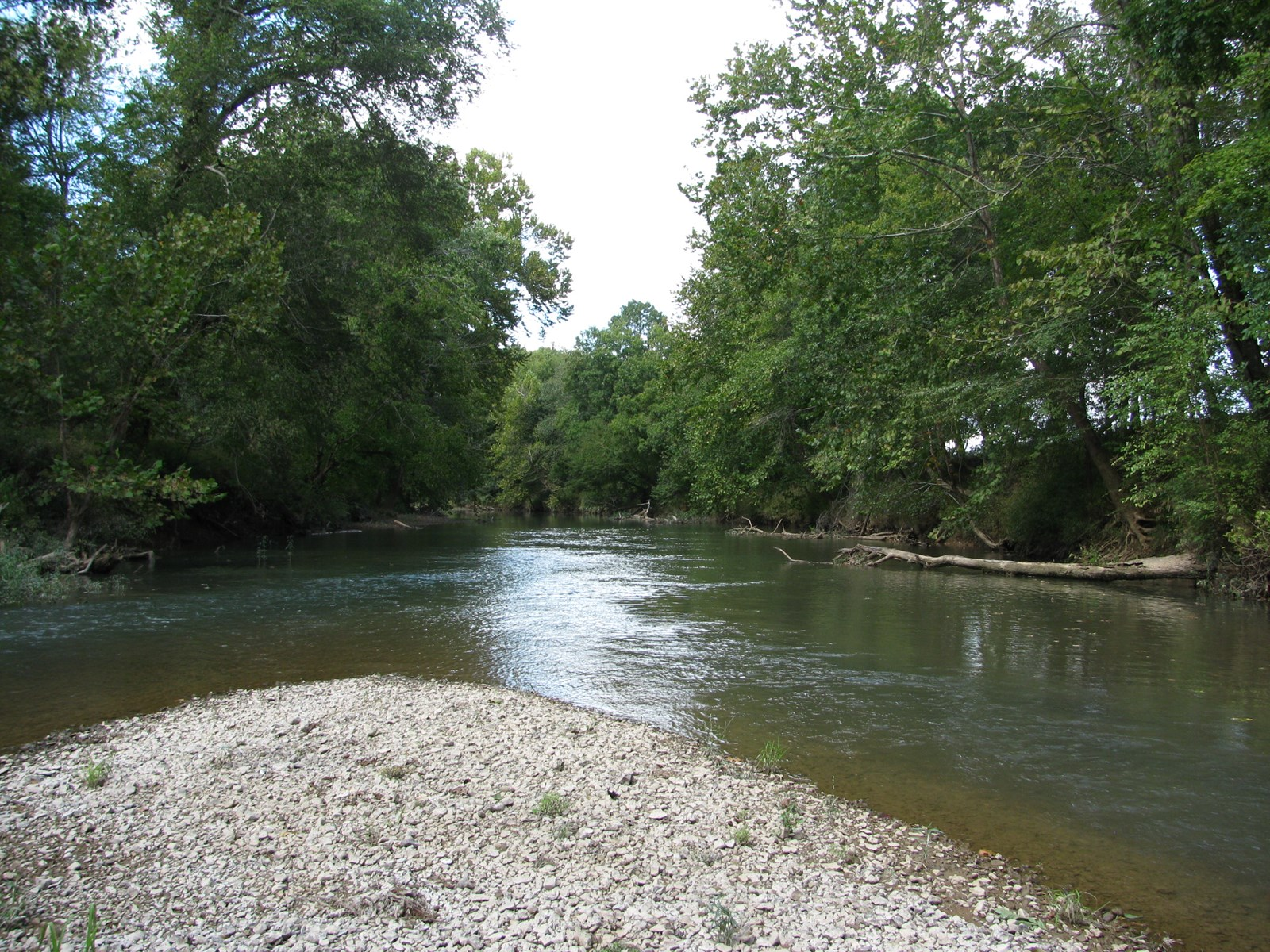 INDIAN CREEK LOT FOR SALE IN SAVANNAH, TN, WATERFRONT