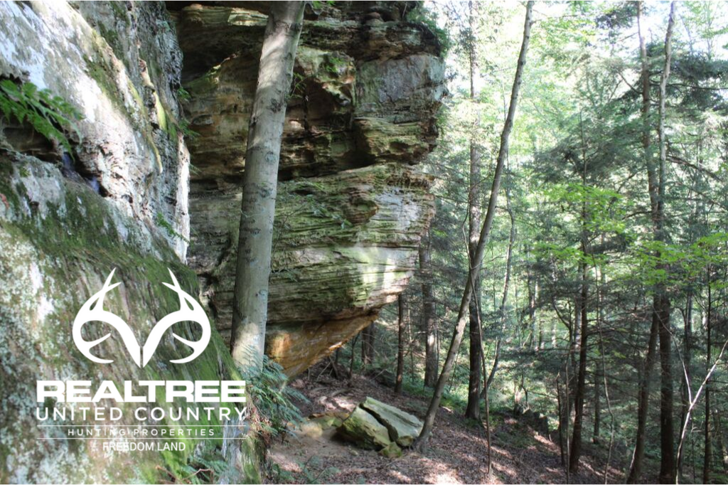 Nature's best in the Hocking Hills of Ohio
