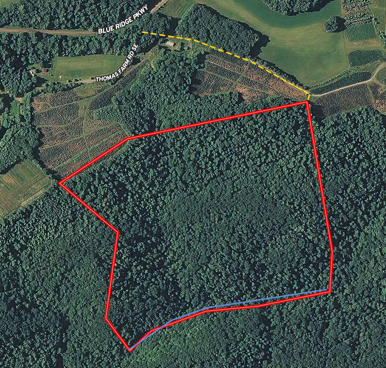 Large Tract of Wooded Land for Sale in Floyd VA